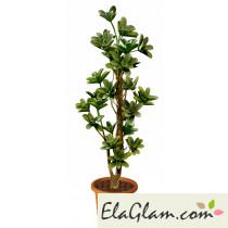 artificial-plant-macrantha-multistep-h9305
