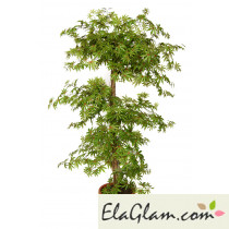 artificial-plant-maple-multistep-h9306